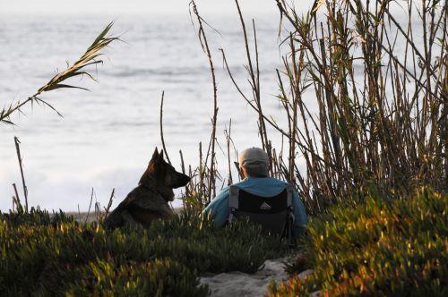 šuo, naminis gyvūnėlis, šunys, vokiečių & nbsp, piemuo, ištikimas, ištikimas, kompanionas, taikus, vanduo, saulėlydis, draugas, vyro & nbsp, geriausias & nbsp, draugas, papludimys, vyras, vyresnysis, sėdi, vandenynas, jūra, žmogaus geriausias draugas