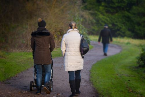 evoliucija,gyvenimas,adresas,kelias,vaikščioti,vaikščioti,ramus,parkas,maršrutas,pasivaikščioti