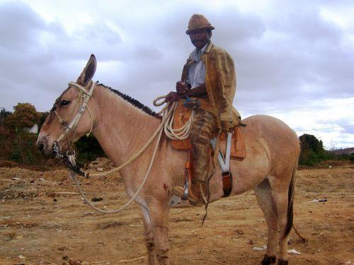 masyvas kaubojus,jequitinhonha slėnis,araçuaí,kaubojus,Royalty Free