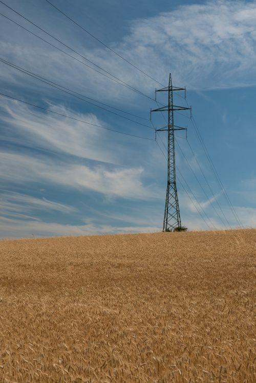 stiebas, elektrinis stiebas, laidai, kabeliai, dangus, miežiai, Šalis