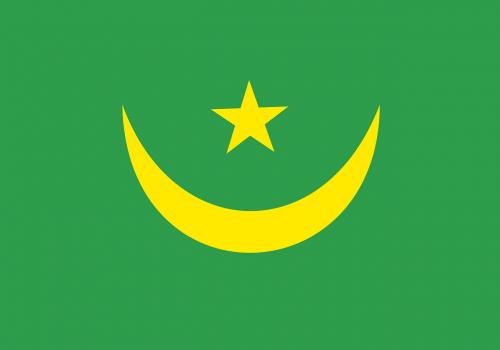 Mauritanija,vėliava,nacionalinis,Šalis,simbolis,mauritanijos,ženklas,tauta,ženminbi,nemokama vektorinė grafika