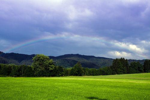 pieva,debesys,vaivorykštė,natūralus spektaklis,nuotaika,dangus,žolė