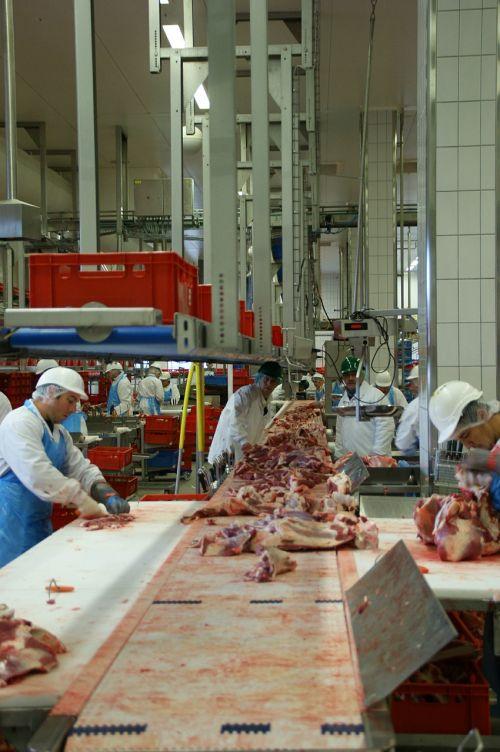 mėsa,mėsininkas,skerdyklos,mėsininkas,jautiena
