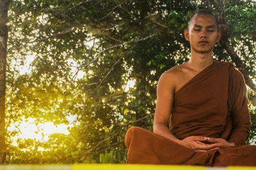 medituoti,teravada budizmo,vienuolis,medituojantis vienuolis,budizmas,meditacija,religinis,tradicinis,religija,saulėlydis,dusk,vienuolis miške