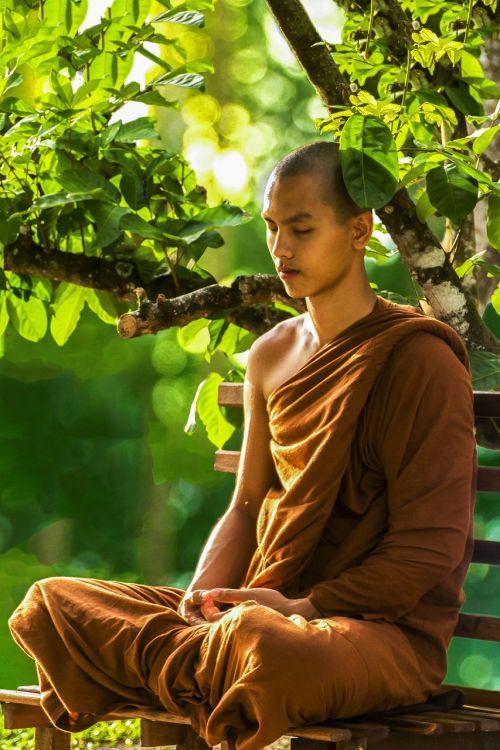 meditacija,vienuolis medituojantis,teravada budizmo,religija,religinis,vienuolis,medituojantis,dvasinis,budizmas,zen,dvasingumas,taika,bhikkhu,taikus