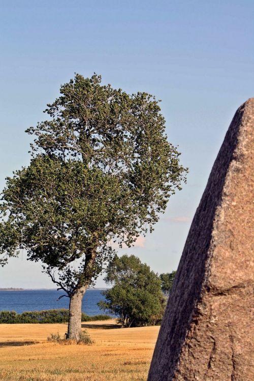 megalitinis kapas,tolkien,viking,denmark,lolland,Kragenäs,foundling,mistinis,pietų linksmas archipelagas,gotika,garbinimo vieta,druidai,kapinės,kapas,kapas,Baltijos jūra,lemtis