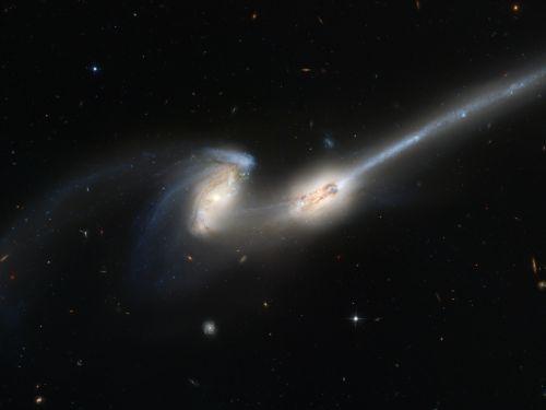 spiralės & nbsp, galaktikos, pelės & nbsp, galaktikos, ngc & nbsp, 4676, dujos, uodegos, NASA, Habla, kosmosas & nbsp, teleskopas, viešasis & nbsp, domenas, tapetai, fonas, žvaigždynas & nbsp, koma & nbsp, berencijos, erdvė, žvaigždės, kosmosas, visata, žvaigždė, dangaus, sujungiančios galaktikos
