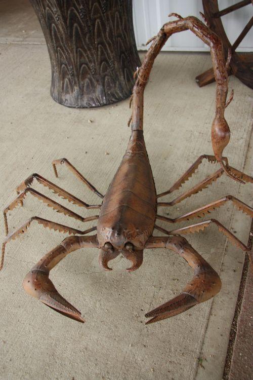 metalas, skorpionas, metalo skorpionas