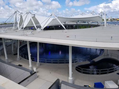 Miami,frost science muziejus,akvariumas,muziejus,mokslo muziejus
