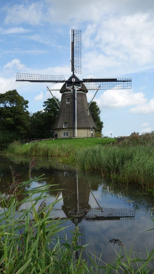 malūnas,malūno geležtės,vėjo malūnas,dagtai,istorinis pastatas,istorinė malūnas,olandų kraštovaizdis,vėjo energija,ganykla,olandų malūnas,kukurūzų malūnas,holland,Nyderlandai,mediniai dagiai,atspindys