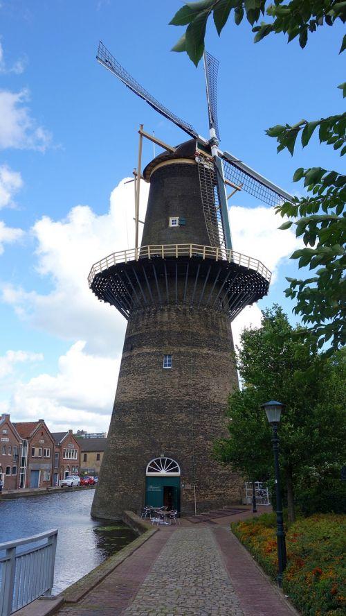 malūnas,grūdų malūnas,vėjo malūnas,malūno geležtės,mėlynas dangus,brandersmolen,istorinis pastatas,istorinė malūnas,holland,dagtai,Nyderlandai,aukštas,schiedam,gin,kukurūzų malūnas,stellingmolen,turizmas