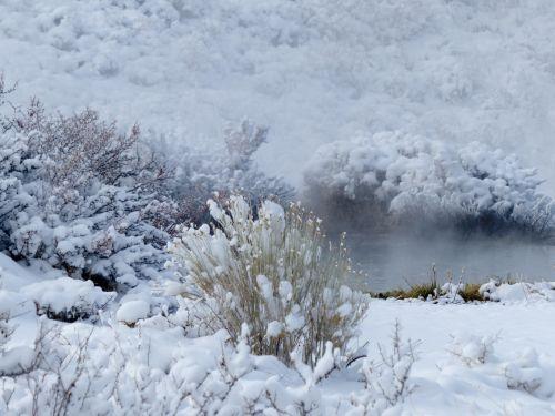 mineralinis, karštas, pavasaris, sniegas, garai, žiema, kraštovaizdis, scena, mineralinis karštas spyruoklis sniege