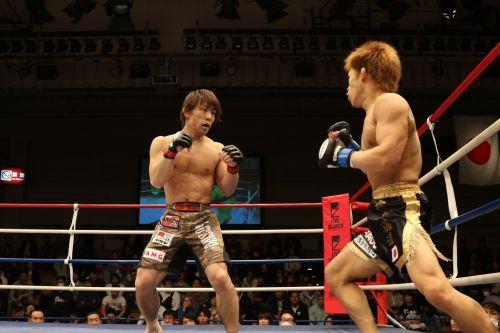 mma,mišrūs kovos menai,Japonija,maza kovoti,šooto,maza,kovų menai