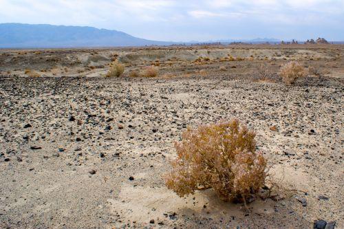 šepetys, Kalifornija, miręs, dykuma, sunaikinimas, purvas, žemė, tuščia, vienišas, atviras, Rokas, smėlis, dykuma, mojave dykuma desolation