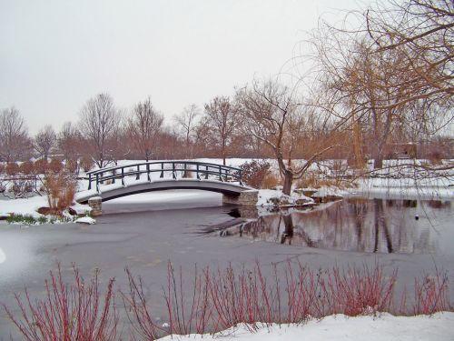 moneta, tiltas, parkas, žiema, sniegas, Monetinis tiltas sniego dengtame parke