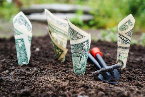 pinigai,augti,palūkanos,sutaupyti,investuoti,akcijos,fondai,bankas,finansai,banknotai,finansinis,taupomoji sąskaita,banko sąskaita