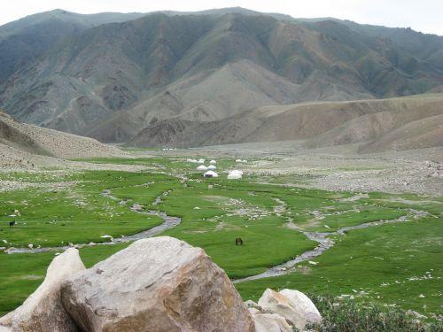 Mongolija,altas,Jurtai