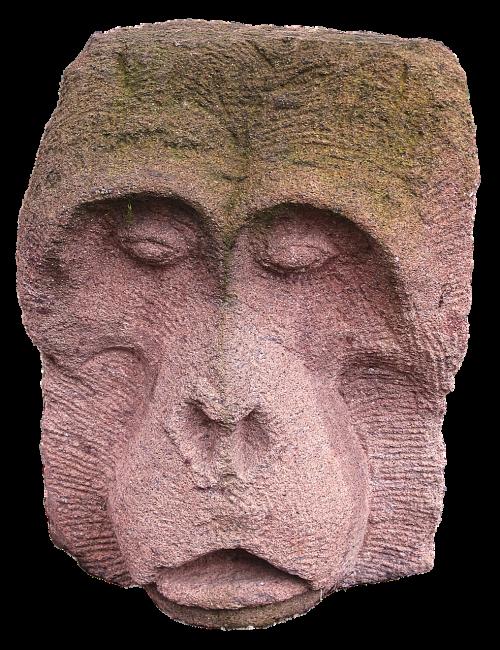 beždžionė,akmens figūra,skulptūra,meno kūriniai,skulptorius,meno meno,steinmetz,akmuo,sodo figūrėlės,statula,ornamentas,apdaila,deko,ištemptas,mielas,izoliuotas