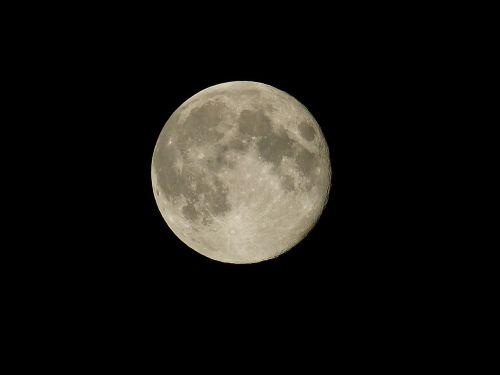 mėnulis,naktis,mėnulio šviesa,erdvė,visata,naktinis dangus,dangus,tamsi,niūrus,mistinis,creepy,juoda,mėnulio krateriai,mėnulio jūra,krateris,pilnatis,mėnulio mare,mėnulio paviršius,poveikis,struktūros,mėnulio struktūros,paviršiaus struktūros,Terrae,copernicus,mėnulio kateris kapadija,copernikus krateris ant mėnulio,Tycho,tycho krateris ant Mėnulio,tychokrater,keplero krateris,mėnulio krateris kepleris,Mare imbrium,lietaus jūra,mare serenitatis,džiaugsmo jūra,mare tranquillitatis,ramus jūra,Maare crisium,vairavimo jūra,mare fecunditatis,vaisingumo jūra,langreno kritika,langrenus,mare cognitum,žinoma jūra,Mare humorum,drėgmės jūra,Krimaldi,byrgius,mare nectaris,nektaro jūra,mare vaporum,kepkite jūrą,knyga mare,salų jūra,mare nubium,selva marine,kariuomenė,karinis krateris,Aristarchus,Aristarchus crater,mare frigoris,šalta jūra