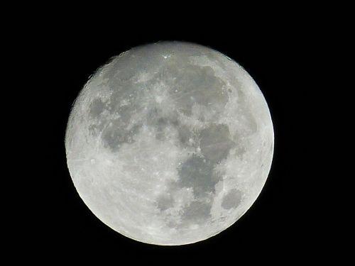 mėnulis,naktis,mėnulio šviesa,erdvė,visata,naktinis dangus,dangus,tamsi,niūrus,mistinis,creepy,juoda,mėnulio krateriai,mėnulio jūra,krateris,pilnatis,mėnulio mare,mėnulio paviršius,poveikis,struktūros,mėnulio struktūros,paviršiaus struktūros,Terrae,copernicus,mėnulio kateris kapadija,copernikus krateris ant mėnulio,Tycho,tycho krateris ant Mėnulio,tychokrater,keplero krateris,mėnulio krateris kepleris,Mare imbrium,lietaus jūra,mare serenitatis,mėnulio nusileidimas,džiaugsmo jūra,mare tranquillitatis,ramus jūra,Maare crisium,vairavimo jūra,mare fecunditatis,vaisingumo jūra,langreno kritika,langrenus,mare cognitum,žinoma jūra,Mare humorum,drėgmės jūra,Krimaldi,byrgius,mare nectaris,nektaro jūra,mare vaporum,kepkite jūrą,knyga mare,salų jūra,mare nubium,selva marine,kariuomenė,karinis krateris,Aristarchus,Aristarchus crater,mare frigoris,šalta jūra