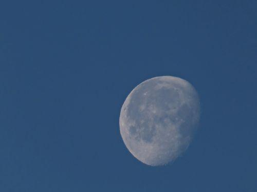 mėnulis,dienos mėnulis,sausis mėnulis,sidabrinis mėnulis,grožis,ryto mėnulis,mėlynas