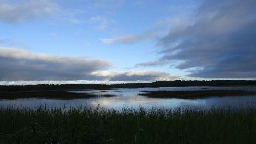 kiauras,nendrė,gamtos rezervatas,pelkė,gamta,ežeras,tvenkinys,kraštovaizdis,vanduo,žolė,vandenys,idilija,gamtos apsauga,pelkėtas,pelkė,Moorland,nuotaika,vienišas,pelkės,Nacionalinis parkas,pelkė žolė,šlapynes,pievagrybių žolė,žygis,poilsis