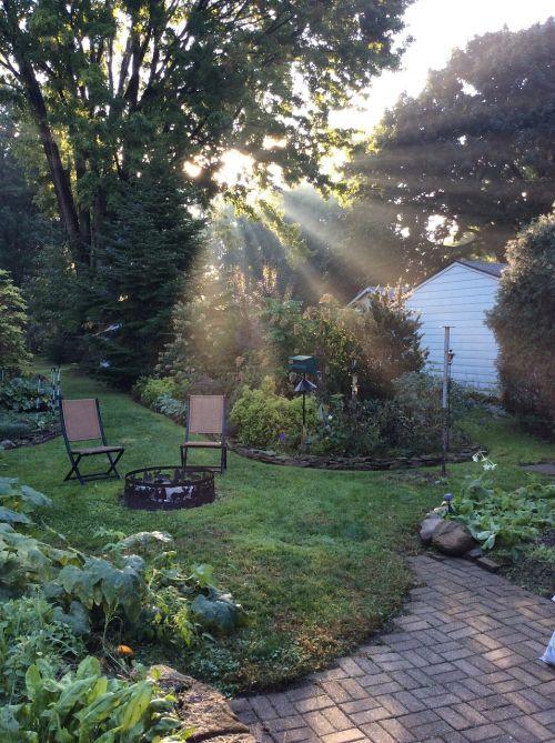 ryto šviesa,sodas,saulės šviesa,kraštovaizdis,vasara,gamta,lauke,terasa,galinis kiemas