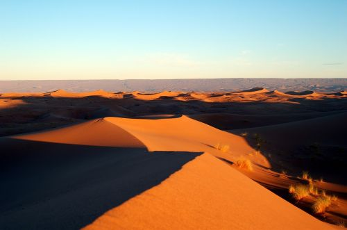 Marokas,afrika,dykuma,marroc,smėlis,soledad,taikus,kraštovaizdis,gamta,kopos,kopos,karštas,vėjo formos,smėlio kopos,kopos pylimas,smėlio formavimasis,aušra,susivienijimai,tamsumas,tyla,tapetai,fonas,ekrano užsklanda,zen,taika,harmonija,crest
