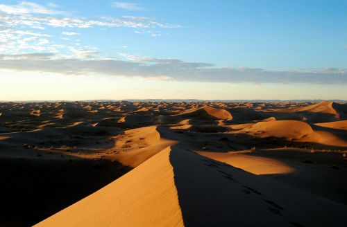 Marokas,afrika,dykuma,marroc,smėlis,soledad,taikus,kraštovaizdis,gamta,kopos,kopos,smėlio kopos,fonas,ekrano užsklanda,tapetai,smėlio kopa,aušra,zen,taika,tamsumas,smėlio formavimasis,tyla,vėjo formos,kopos pylimas