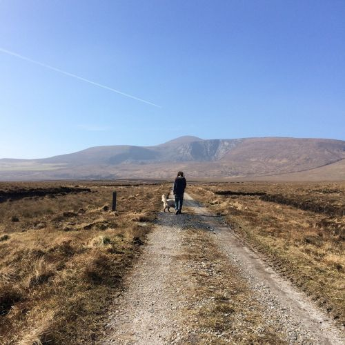 kalnas,vaikščioti,žygiai,nuotykis,kelionė,gamta,keliautojas,vaikščioti,takas,motyvacija,backpacker,vyras,pasiekimas,lauke,įkvėpimas