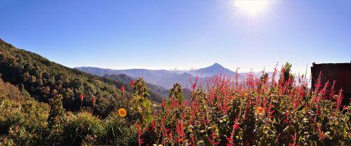 kalnas,augmenija,gamta,gėlės,laukas,aukštis,vulkanas,Meksika,Gvatemala,medžiai,laukiniai,saulė,dangus,horizontas,debesys,medis,maršrutas,mediena,miškas,ekologija,kraštovaizdis,žalias,takas,akmenys,kalnų peizažas,lapai,uolos ir augmenijos,filialai,natūrali augmenija,kaimiškas kraštovaizdis