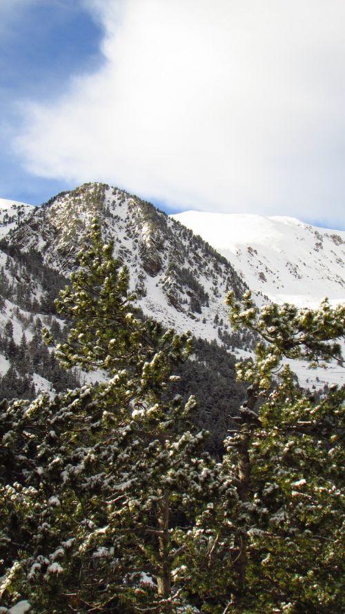 kalnas,Nevada,viršuje,sniegas,Pirėnai,pušis,nevado,dangus,kalnų peizažas,kraštovaizdis,gamta,žiema,snieguotas kraštovaizdis,balta,debesys,šaltas,ledas,kalnų kelias,taika,snieguotas kelias,kelias,vadovauti,alpinizmas,taikus