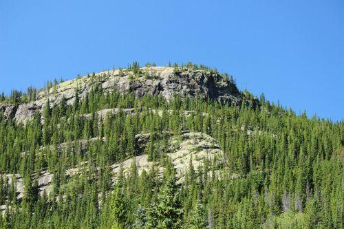 kalnas,miškas,uolingas kalnų nacionalinis parkas,Nacionalinis parkas,nacionalinės parko paslaugos,gamta,kraštovaizdis,medis,dangus,natūralus,parkas,peizažas,turizmas,kalnas,nuotykis,aplinka,vaizdingas,vasara,takas,žygiai,kelionė,estes parkas,Colorado,atostogos,uolingas kalnas,uolos,vakaruose,granitas,dykuma,rmnp