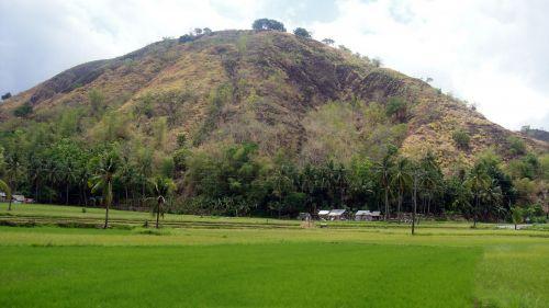 kalnas, žalias kalnas, debesys, gamta, miškas, medžiai, lapai, žalias, žalias & nbsp, ūkis, ūkis, dangus, kraštovaizdis, kalnas ir ūkis