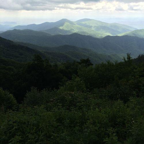 juodieji kalnai šiaurės karolina,kalnų peizažas,kalnų,miškas,medžiai,kraštovaizdis,lauke,peizažas,vasara,miško peizažas,Šalis