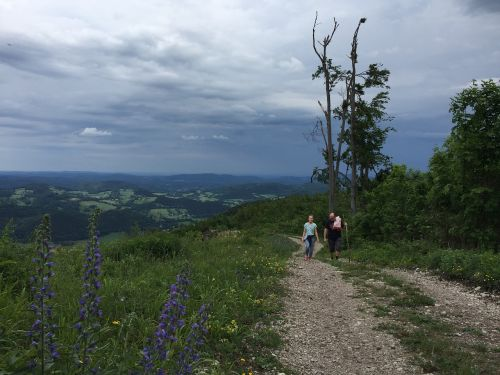 kalnai,debesys,gamta,kraštovaizdis,vaizdingas,kelionė,lauke,kalnas,vasara,natūralus,medis,piko,aplinka,ekskursija,žygiai,Laisvalaikis
