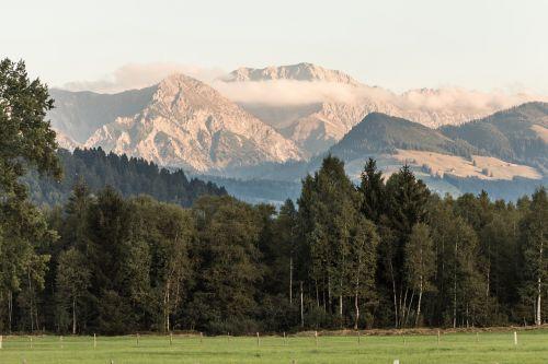 kalnai,miškas,pieva,Alpių,gamta,Allgäu,Allgäu Alpės,kraštovaizdis,panorama