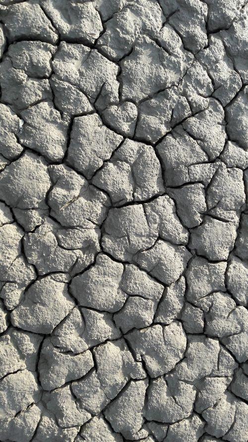 purvas,dehidratuotas,sausra,sausas dirvožemis,molio dirvožemis,krekingo,struktūra,kraigas,sausas,įtrūkimai,geologija,tekstūra,molis