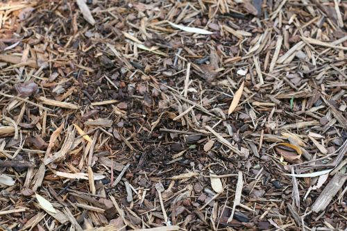 mulčiavimas,purvas,viršutinis dirvožemis,natūralus,mulčiavimas,apželdinimas,lauke,sodinti,sodininkystė,ruda,dirvožemis,sodas
