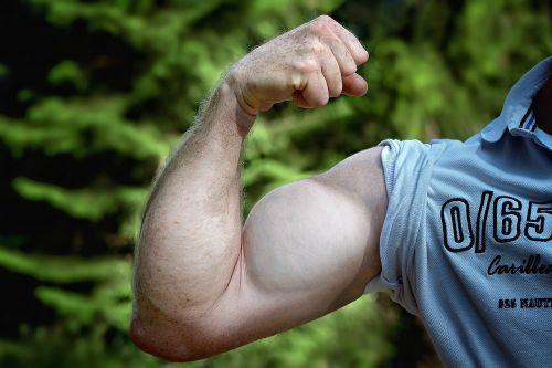 raumenys,ranka,būti mus kelt,žmogaus rankos,vyras,jėga,jėga,stiprus