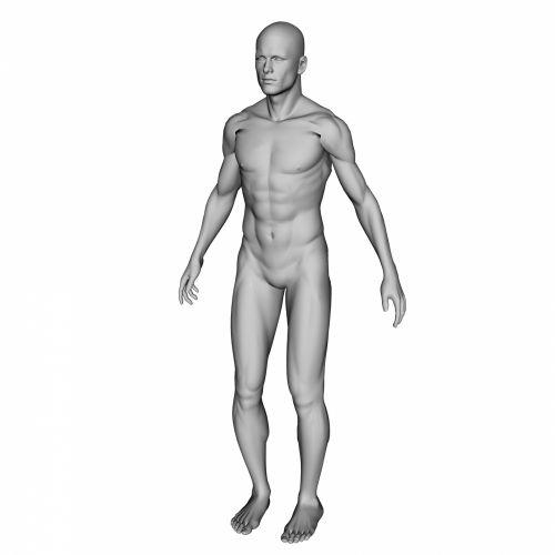raumenys, vyras, Patinas, stiprus, 3d, piešimas, pilka, piktograma, izoliuotas, balta, fonas, raumeningas, raumeningas žmogus
