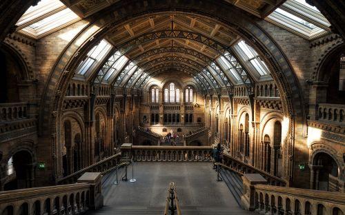 muziejus,Londonas,gamtos istorija,istorija,architektūra,Anglija,Jungtinė Karalystė