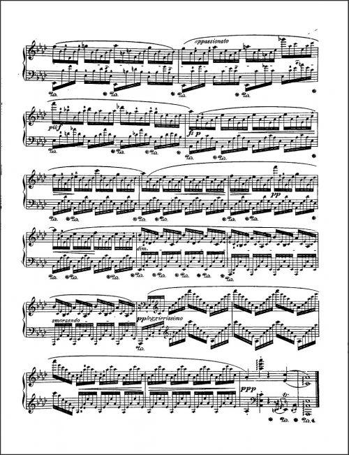muzika,lapo muzika,Pastabos,muzikinė anotacija,žymėjimas,išdėstymas,kompozicija,fortepijono muzika,melodija,chopinas