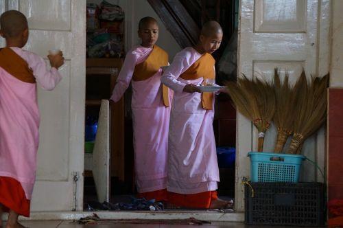 mianmaras,burma,budistų vienuolės,religinis,budizmas,vienuolynas