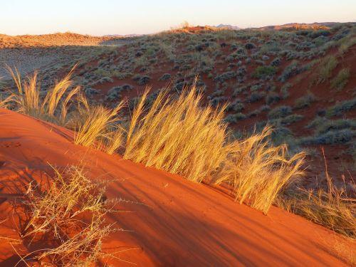 Namib dykuma,rotorinis smėlis,spalviniai žaidimai,dykuma,saulėlydis