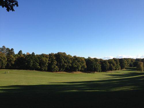 gamta,parkas,kraštovaizdis,medis,grazus krastovaizdis,lauke,žolė
