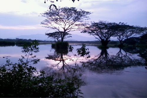 gamta,rezervuaras,dangus,Šri Lanka,vanduo,ceilonas