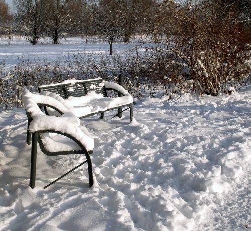 gamta,žiema,kraštovaizdis,sniegas,žiemą,žiemos šaltis,žiemos medžiai,šaltis,ledas,saulė,krūmai,pėdsakai,šviesa,šešėlis,nuotaika,gražus,saulėtas,vitaminas d,vaikščioti,sniego pagalvėlės,baltas kraštovaizdis,saulėtas žiemos peizažas
