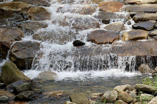 gamta,miškas,upelis,vanduo,kraštovaizdis,akmuo,upelis,upės,srautai,kalnas