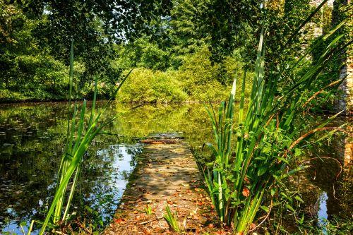 gamta,ežeras,tvenkinys,internetas,prieplauka,vanduo,vasara,natūralus brangakmenis,nuotaika,rami atmosfera,tylus,gražus,idilija,kraštovaizdis,poilsis,atmosfera,idiliškas,medžiai,miškas,atmosfera,romantiškas,veidrodis,mėgautis,oras,aišku,Atsipalaiduoti